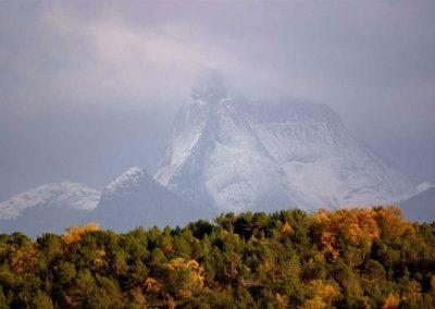 Stetind - Fjell i overskyet vær en høstdag med skog i forgrunn